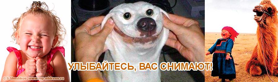 «Улыбайтесь, вас снимают! Copyright © Шашков С.Г.